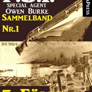 5 Fälle für Agent Burke - Sammelband Nr. 1 (FBI Special Agent)