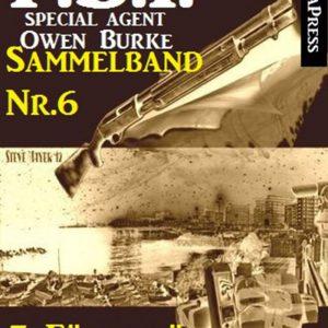 5 Fälle für Agent Burke - Sammelband Nr. 6 (FBI Special Agent)
