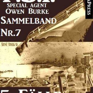 5 Fälle für Agent Burke - Sammelband Nr. 7 (FBI Special Agent)