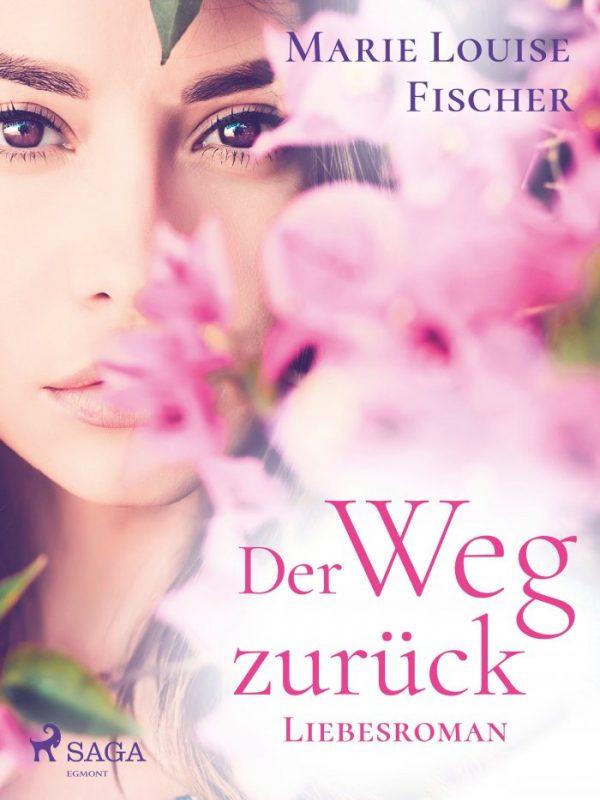 Der Weg zurück - Liebesroman
